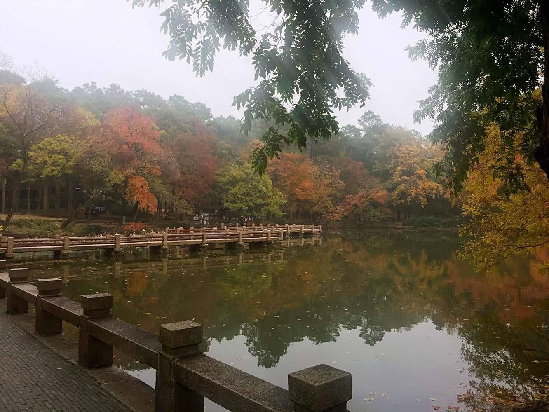 中国四大赏枫胜地——苏州天平山风景区
