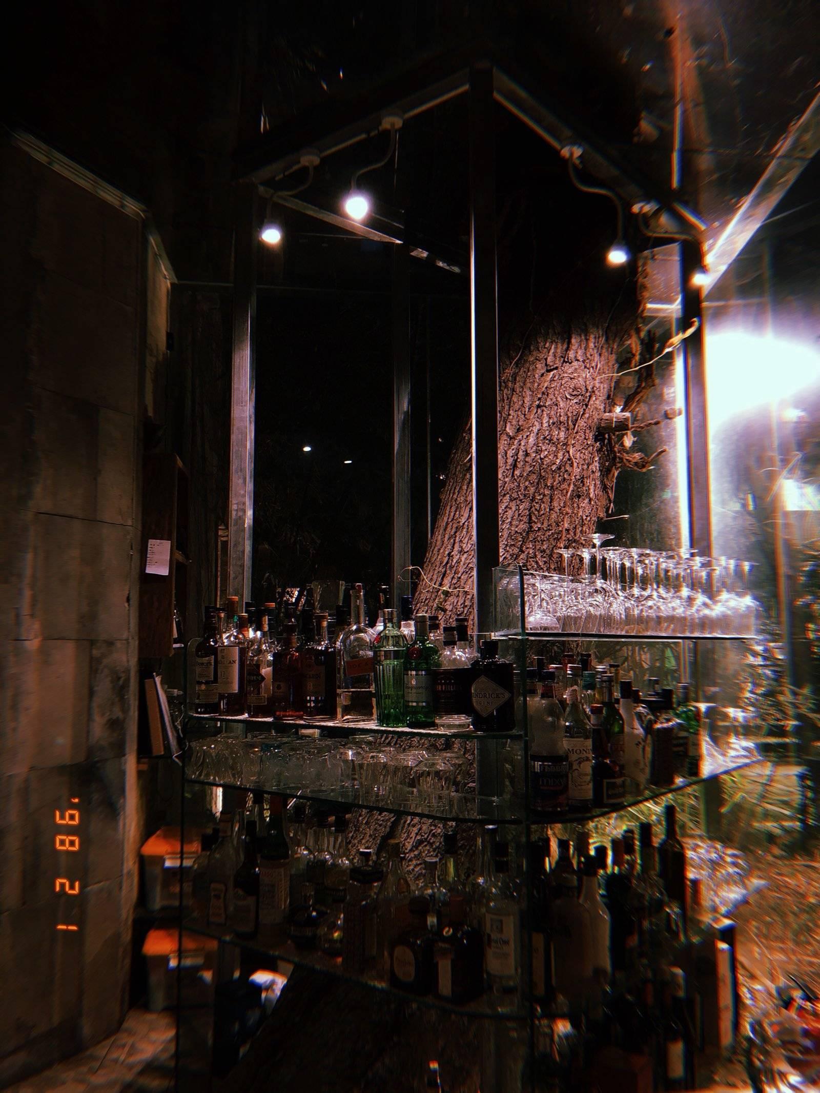欧式风格酒吧门口植物